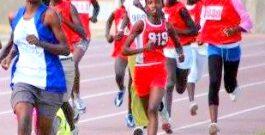 ATHLÉTISME : 5ème JOURNÉE SUR PISTE. Les athlètes étaient motivés.